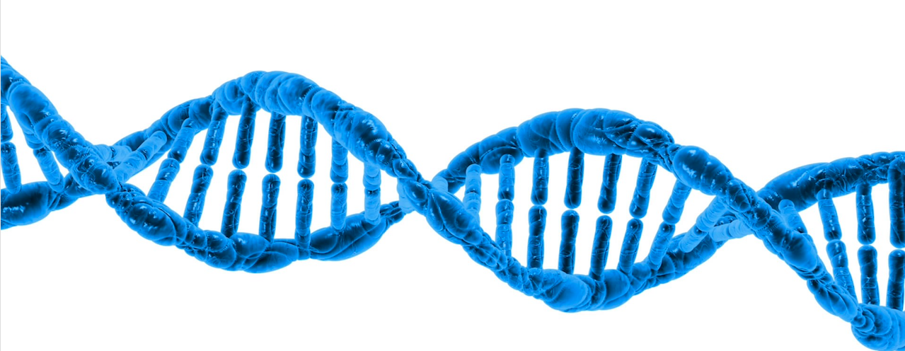 dna helix | genetic discrimination