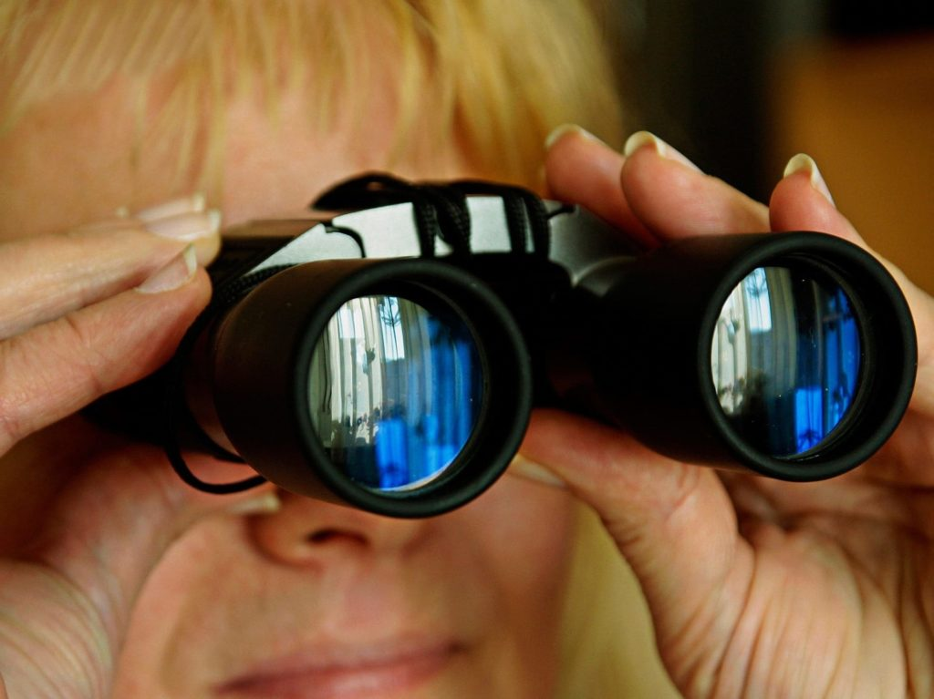 binocular peek | 2019 early look aca prices