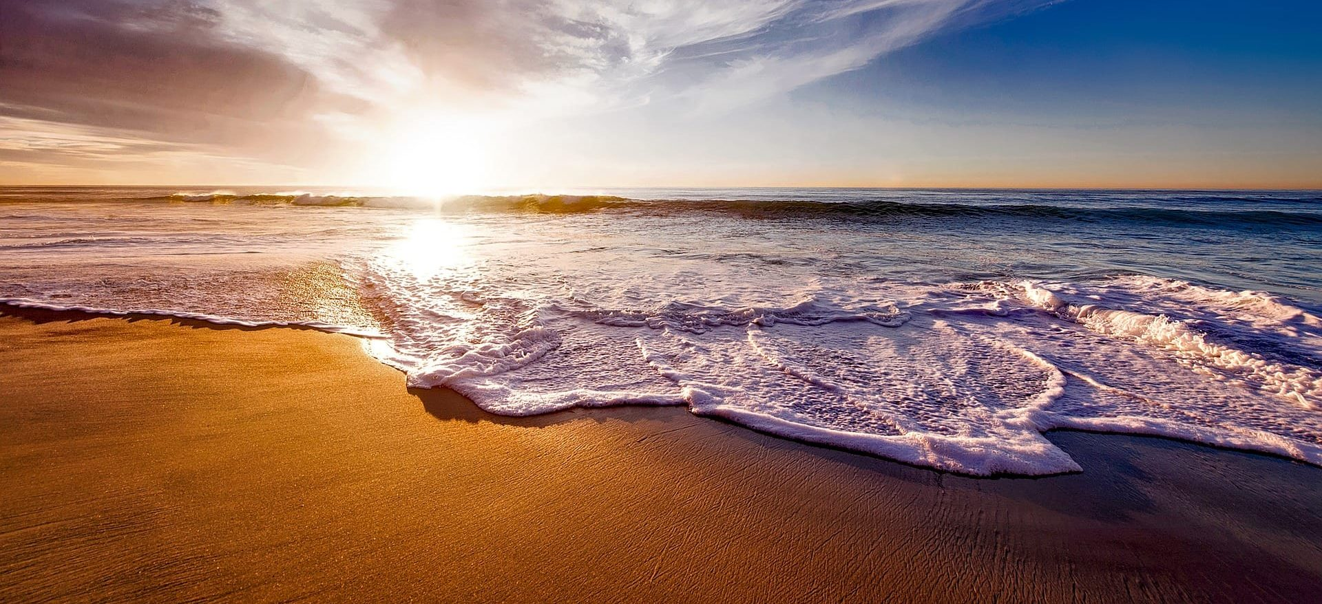 cali shore