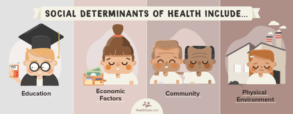 social determinants of health include | 4 example areas